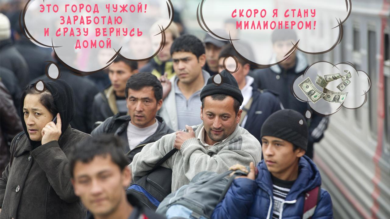 мигранты приехали в россию
